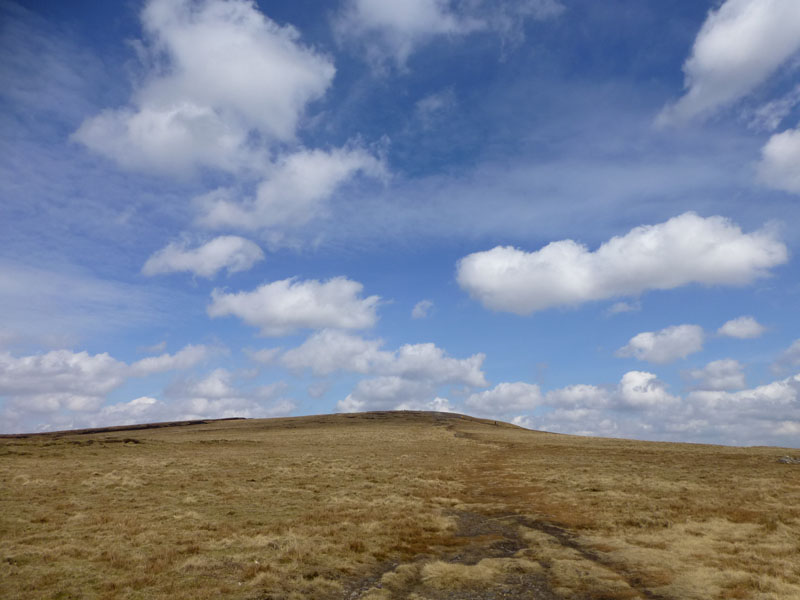 Pendle Walk