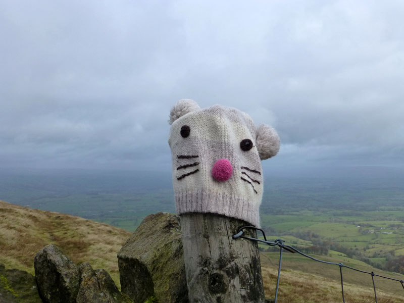 Pendle Hat