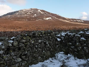 Sheepfold to Bleaberry Fell